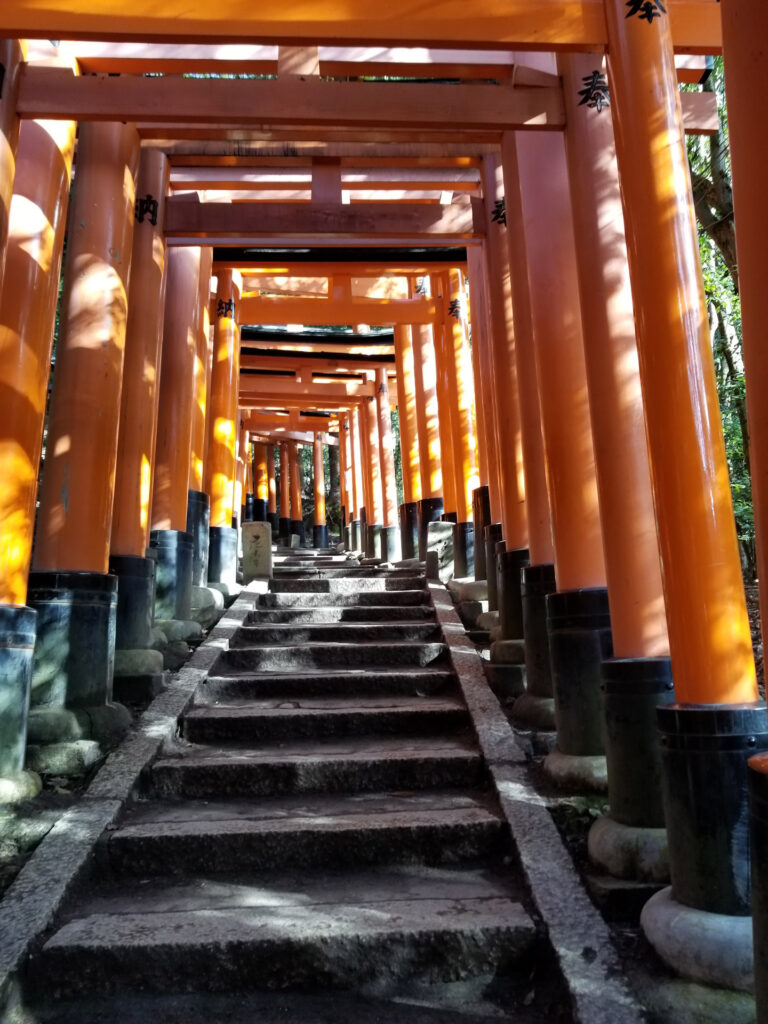 Color photo of steps and orange gates at the Fushimi Inari Shrine in Kyoto
